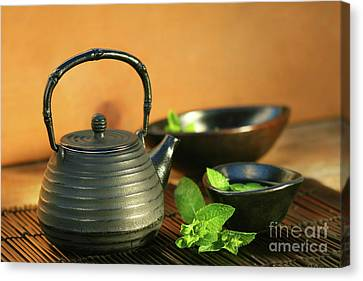 Japanese Teapot And Cup  Canvas Print by Sandra Cunningham