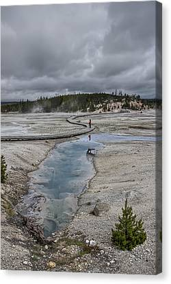 Japanese Woman With Umbrella At Norris Geyser Basin Canvas Print by Daniel Hagerman