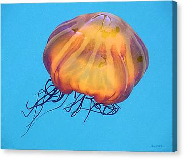 Canvas Print featuring the photograph Jellyfish by Wendy McKennon