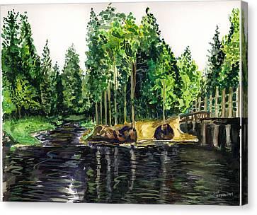 Jersey Pines Canvas Print by Clara Sue Beym