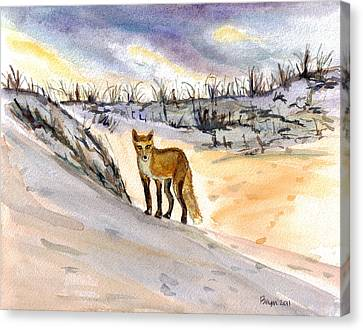 Canvas Print featuring the painting Jersey Shore Fox by Clara Sue Beym