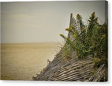 Jersey Shore Canvas Print by Heather Applegate