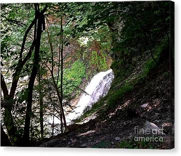 Canvas Print featuring the photograph Jewell Of The Forest by Christian Mattison