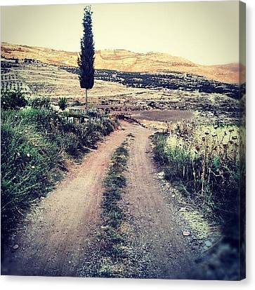 #jo #jordan #amman #nature #green #road Canvas Print by Abdelrahman Alawwad