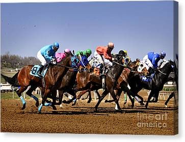 Canvas Print featuring the photograph Jockeying For Position by Nava Thompson