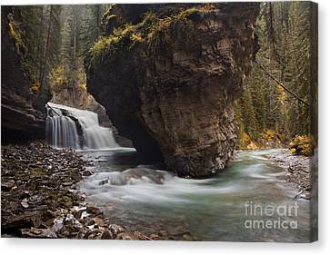Long Bed Canvas Print - Johnston Creek Waterfall by Keith Kapple