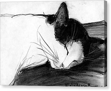 Joujou 1 Canvas Print by Mona Edulesco