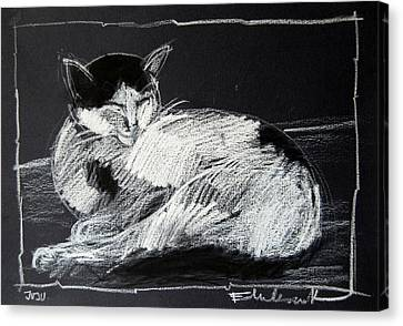 Joujou 2 Canvas Print by Mona Edulesco
