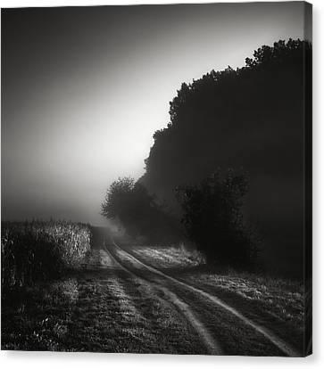 Journey Into The Unknown - Cesta Do Neznama Canvas Print by Jaromir Hron