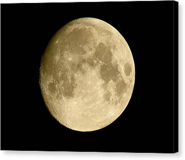 July Moon Canvas Print