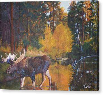 Just Passing Through Canvas Print by Bill Werle