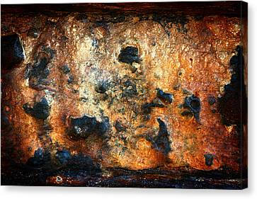 Just Rust Canvas Print by Shane Rees