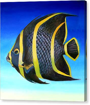 Juvenile French Angelfish Canvas Print