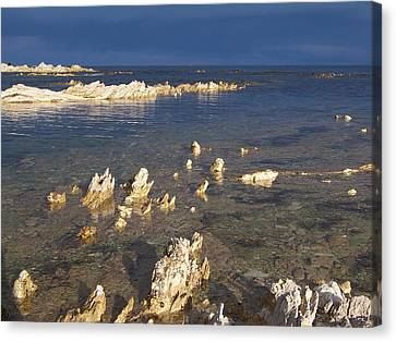 Canvas Print featuring the photograph Kaikoura Coast by Peter Mooyman