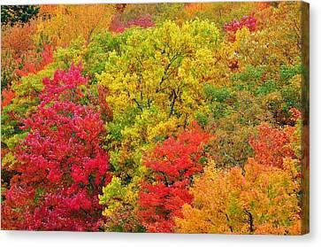 Kaleidoscope Canvas Print by Jeff Moose