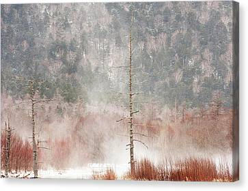 Kamikochi Winter Canvas Print by Skye Hohmann