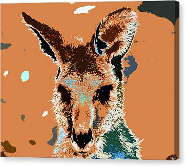Kanga Roo Canvas Print by David Lee Thompson
