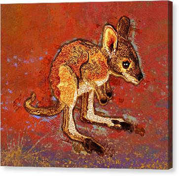 Kangaroo Joey Canvas Print by Mary Ogle