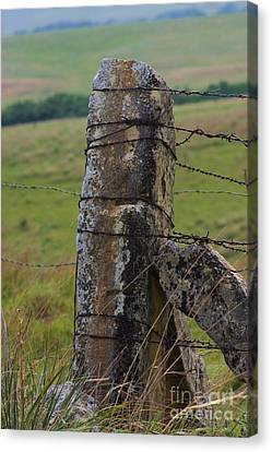 Kansas Country Limestone Fence Post Close Up Canvas Print