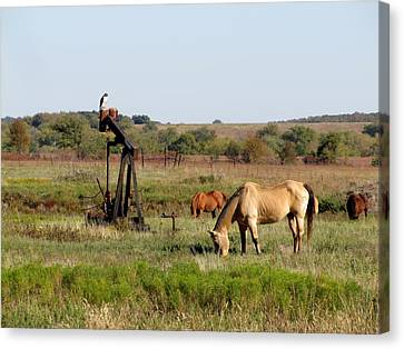 Kansas Tableaux Canvas Print by Keith Stokes