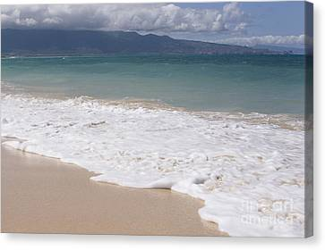 Kapukaulua - Purely Celestial - Baldwin Beach Paia Maui Hawaii Canvas Print by Sharon Mau