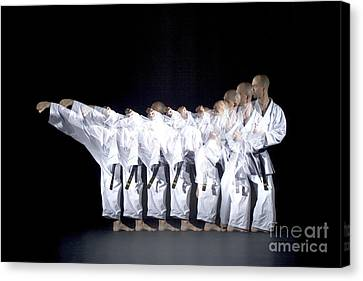Karate Expert Canvas Print by Ted Kinsman