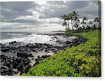 Kauai Afternoon Canvas Print by Robert Meyers-Lussier