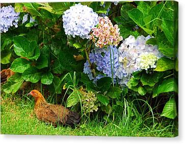 Canvas Print featuring the photograph Kauai Wildlife by Lynn Bauer