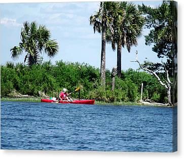 Kayaking Along The Gulf Coast Fl. Canvas Print by Marilyn Holkham
