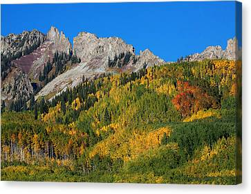 Canvas Print featuring the photograph Kebler Pass by Jim Garrison