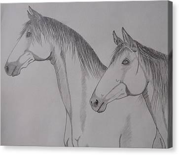Keiger Mustangs Canvas Print by Gerald Strine