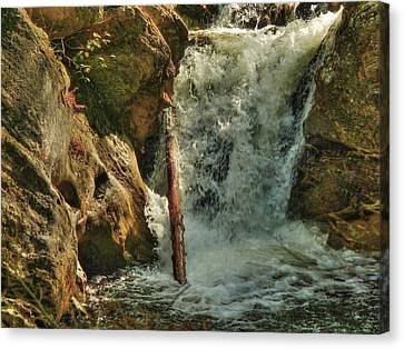 Kent Falls Redux Canvas Print by William Fields