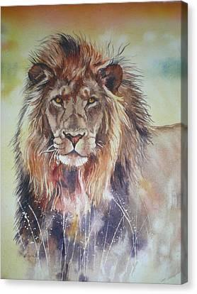 Kenyan Lion Canvas Print