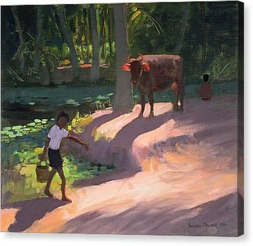 Kerala Backwaters Canvas Print