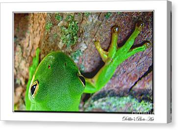 Canvas Print featuring the photograph Kermit's Kuzin by Debbie Portwood