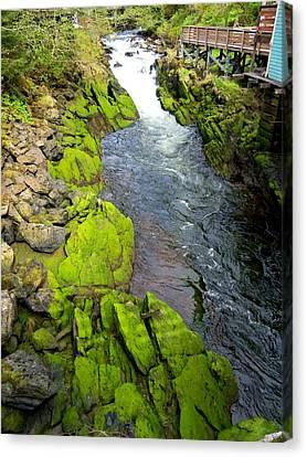 Ketchikan Creek 3 Canvas Print by Randall Weidner