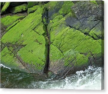 Ketchikan Creek 4 Canvas Print by Randall Weidner