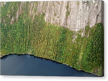 Ketchikan Misty Fjord 8857 Canvas Print by Michael Peychich