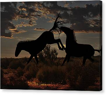 Canvas Print featuring the photograph Kick by Tammy Espino