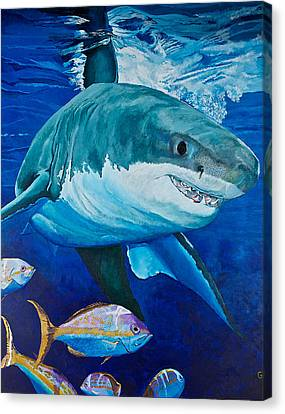 Kids Love Sharks Canvas Print by Terry Gill