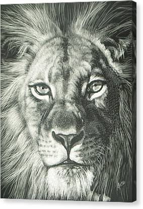 King 2 Canvas Print by Joanna Gates