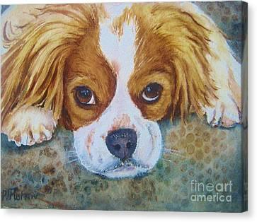 King Charles Spaniel Canvas Print by Patricia Pushaw