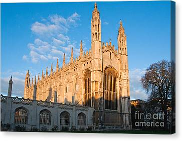 Canvas Print featuring the photograph Kings At Sunrise by Andrew  Michael