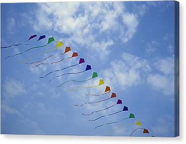 Kites Fly In A Rainbow Of Colors Canvas Print by Stephen Alvarez