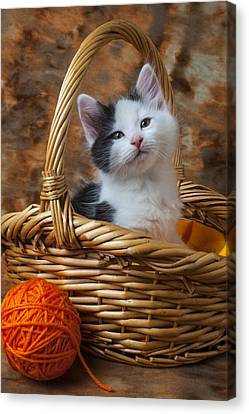 Kitten In Basket With Orange Yarn Canvas Print by Garry Gay