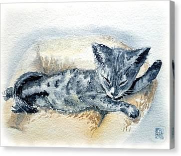 Kitten Canvas Print by Irina Sztukowski