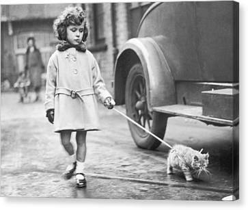 Kitten On Lead Canvas Print by Fox Photos