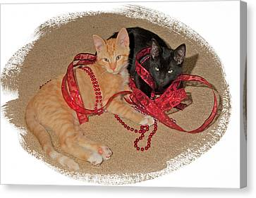 Kittens Ribbons And Beads Canvas Print