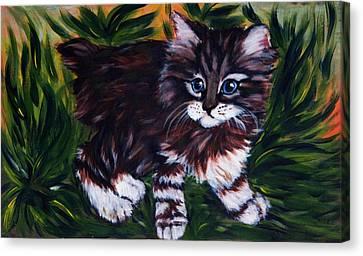 Kitty Canvas Print by Elena Melnikova