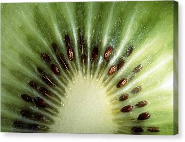 Kiwi Slice Canvas Print by Vaughan Fleming
